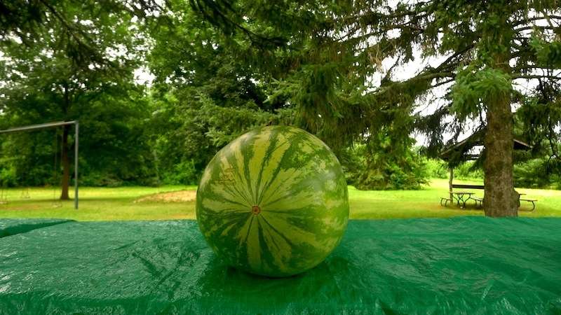 Lopez.watermelong