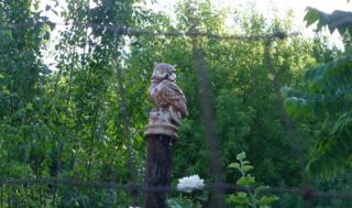 Owlpole