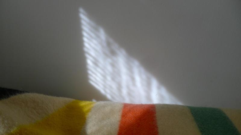 Bedstripe